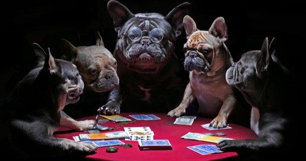 Pelajaran Hidup di Meja Poker